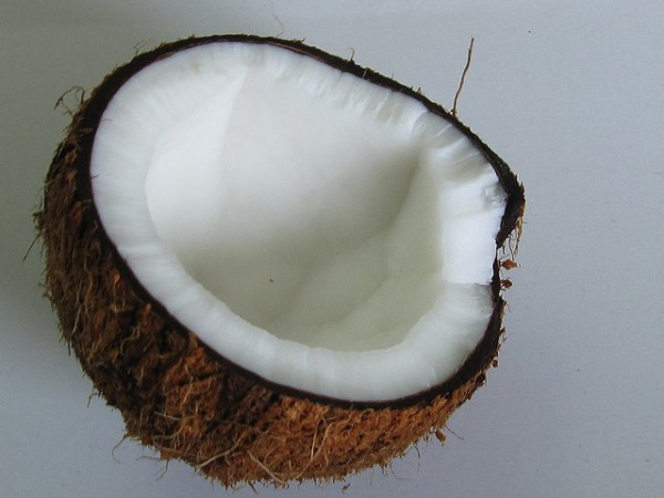 Coconut (Image Credit: Chandrika Nair)