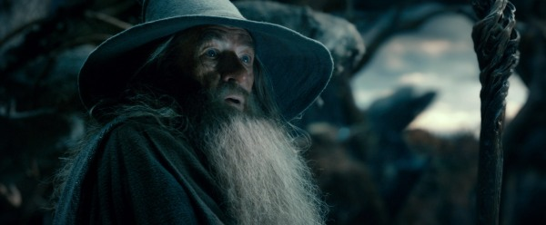 Ian McKellen as as Gandalf in THE HOBBIT: THE DESOLATION OF SMAUG (Image Credit: Warner Bros)
