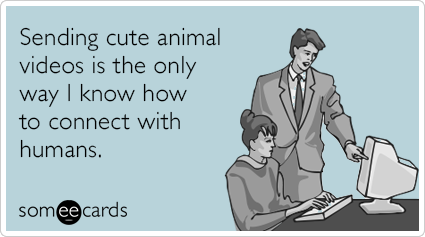 https://thedailyquirk.files.wordpress.com/2013/10/cute-animal-videos-humans-confession-ecards-someecards.png?w=940