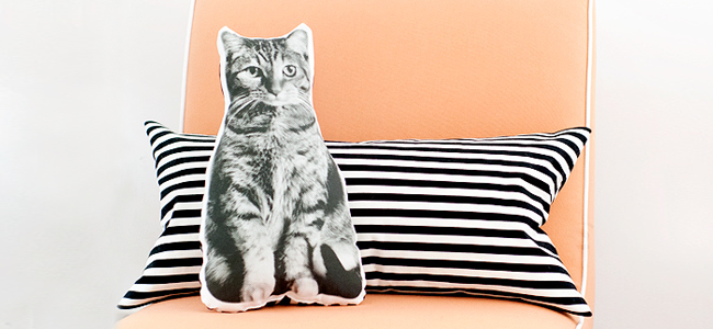 DIY Pet Pillow by Yellow Brick Home