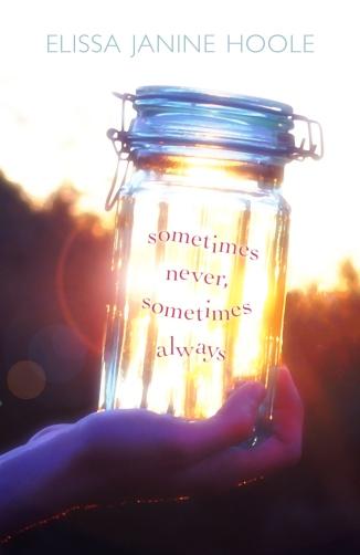 Sometimes Never, Sometimes Always (Image Credit: Elissa Janine Hoole)