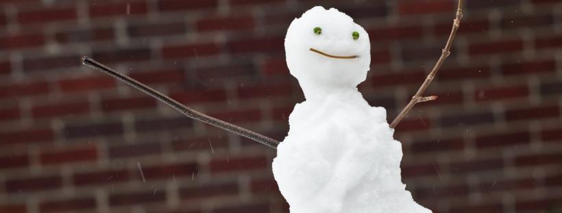Snowman (Image Credit: Jesse Courtemanche)