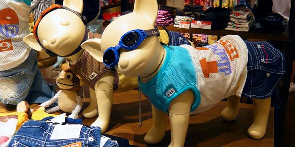 Dog Clothes (Image Credit: Flick User Stéfan)