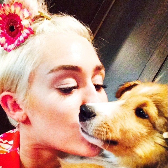 Miley Cyrus (Image Credit: Miley Cyrus/Instagram)